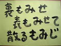 kotoba_2012