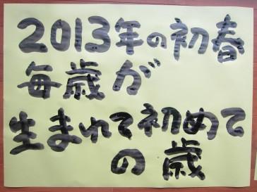 2013_01