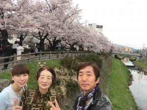 袋川土手の桜