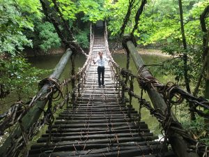 四国村のかずら橋