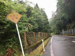 涼しかった山志谷峠