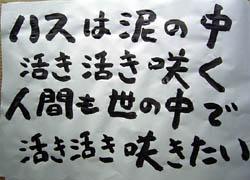 kotoba_1608