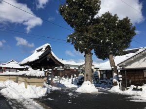 雪かき終了!