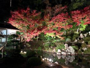 興禅寺さんの庭園