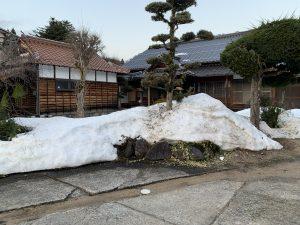 雪解けが進む境内